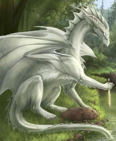 typical_dragon.jpg